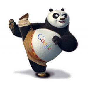 Google Panda Update Boosts Local