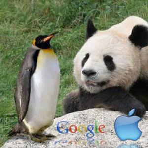 panda-penguin-apple300